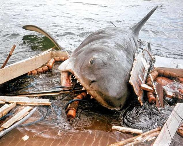 Image sourced from: http://www.nydailynews.com/entertainment/tv-movies/christmas-eve-marathon-jaws-spike-stange-choice-article-1.995359