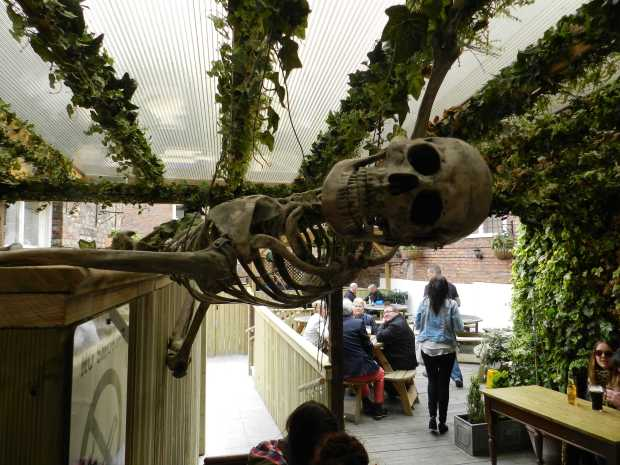 The Beer Garden. Photos copyright QueenMab/Shipscook Photographic. contact simon.ball3@btopenworld.com for commercial reuse
