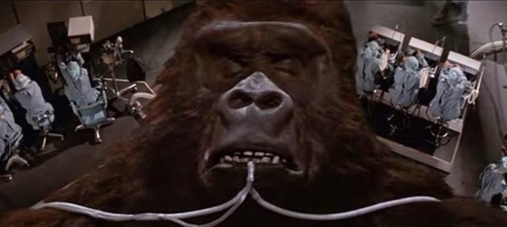 King Kong Lives 2